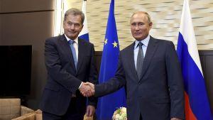Sauli Niinistö och Putin skakar hand i Sotji.