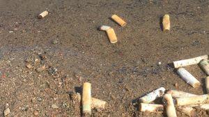 Tupakantumppeja rannalla ja vedessä.
