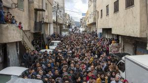 Demonstration mot president Trumps fredsplan. Amman, Jordanien 31.1.2020