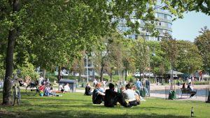 ihmisiä piknikillä Tokoinrannassa