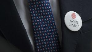 Kampanjbrosch för lämna-sidan i folkomröstningen om Storbritanniens medlemskap i EU.