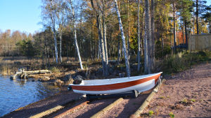 En vitröd motorbåt framför en strand med träd i bakgrunden.