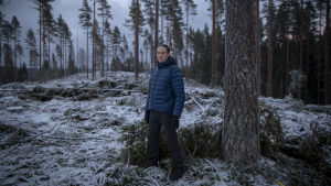 Vesa Syrjänen, maanviljelijä ja metsänomistaja