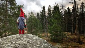 En tomte står på en sten med ryggen mot kameran och tittar in i skogen