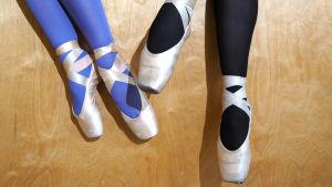 Kahdet jalat joissa balettitossut ja sukkahousut.