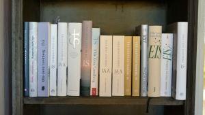Ulla-Lena Lundbergs roman Is på flera språk.