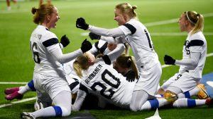 Finlands spelare jublar