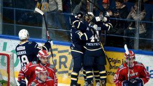 Blues-HIFK, Blues spelare firar, 22.1.2015
