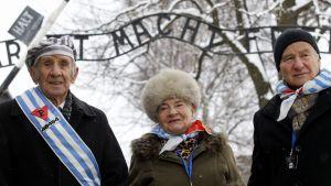 Tidigare Auschwitzfångar vid lägerporten på 70-årsdagen av befrielsen.