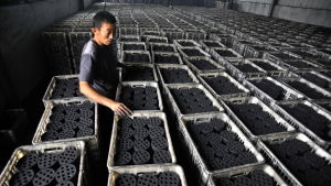 Kina stoppade största delen av kolimporten från Nordkorea i februari men importen av andra metaller ökade samtidigt dramatiskt