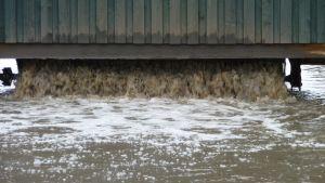 avloppsvatten