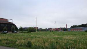 Biodalen i juni 2013.