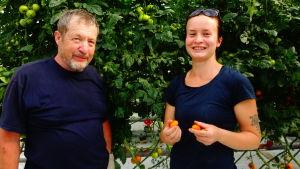 Björn Holmqvist och Carolina Holmqvist står framför sina tomatodlingar