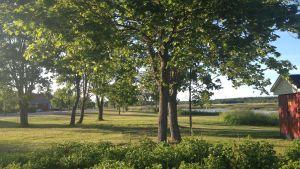 Parken vid Norrfjärden