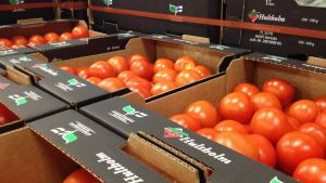 På Hultholm i Korsnäs packar man tomat och gurka odlade i trakten.