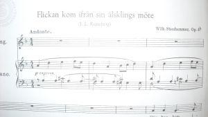 Stenhammarin laulu