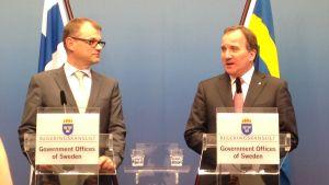 Juha Sipilä och Stefan Löfven i juni 2015.