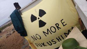 Protest mot kärnkraftverk i pyhäjoki.