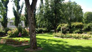 Rosenparken i Pargas.