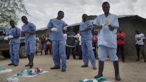 Team förbereder sig för att söka bort liket av en Ebola misstänkt 28-åring i Kalihun, SIerra Leone