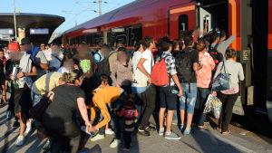Flyktingar på väg med tåg till Tyskland via Ungern.