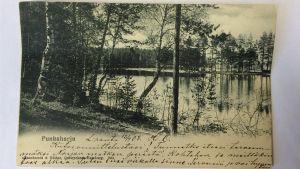 Maisemapostikortti Punkaharjulta vuodelta 1903