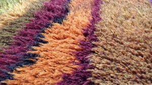 en rya designad textilkonstnär Uhra-Beata Simberg-Ehrström
