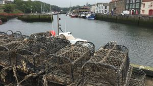 Fiskehamnen i Eyemouth, Skottland.