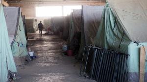 Softex hör till de värsta flyktinglägren i Grekland.