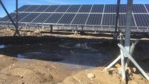 En solpanel ställd i leran