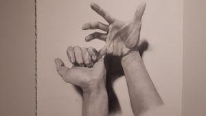 Annina Fremgens blyertsteckning föreställande ett par händer.