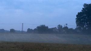 Kvällsdimma bara ett hundratal meter från Litauens gräns mot Kaliningrad.