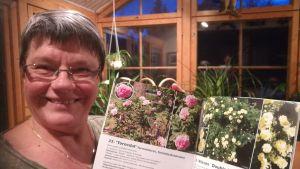Märtha Vesterback har skrivit om rosariet vid Borgå sjukhus, 2017.
