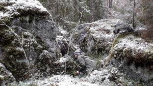 Biologen Niclas Fritzén på väg in under ett klippblock i jakten på småkryp.