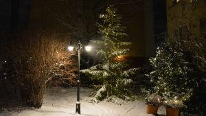 En lykta med två lampor lyser upp snön och en julgran på en innergård.
