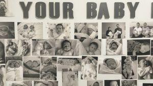 Bild från fertilitetskliniken New Lifes huvudkontor i Tbilisi.
