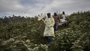 Begravning av ebolaoffer i Butembo,  Kongo 17.5.2019