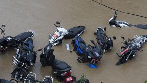 mopeder i en flod.