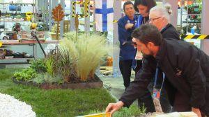 Jurun kollar det finska lagets trädgårdsanläggning.
