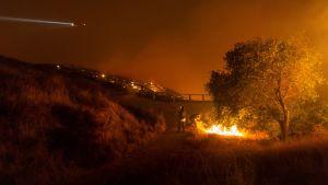 Bild av markbrand i Kalifornien, USA.