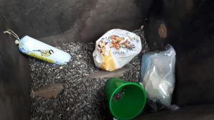 Påsen med narkotika fanns vid ett fågelbräde. Knarkpåsen finns nere till höger på bilden.