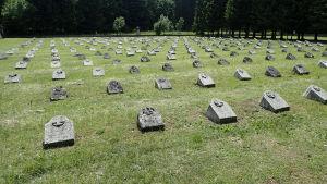 Begravningsplats för första världskrigets offer i Slovenien.