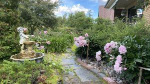 Mitt i en trädgård där en stengång löper mitt i bilden, till vänster finns en fontän och till höger stora rosa blommor.
