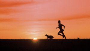 Joggare med hund i morgongryningen