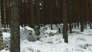 Försvarslinjen på Hangö udd. På bilden är det vinter och den så kallade Harparskoglinjen är täckt av snö.
