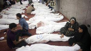 Anhöriga samlade vid långa rader av kroppar i en moské i Kairo den 15 augusti 2013, dagen efter Rabaa-massakern.