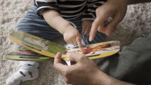 Ett litet barn tittar i en bok tillsammans med en vuxen