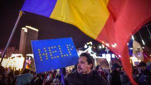 Demonstranter i Bukarest vädjade om hjälp från EU under en protest mot regeringens förslag till nya korruptionslagar 10.12.2017.