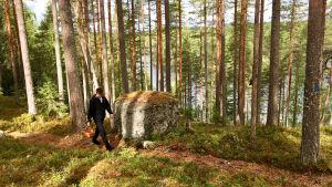 Henri Alén kävelee metsässä sienikori kädessä.