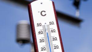 Bild på en termometer som visar över 40 grader Celsius.